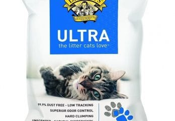 Top Five Best Cat Litters 2017 – Buyer's Guide