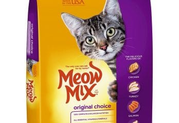 Best 4Health Cat Foods 2017 – Buyer's Guide
