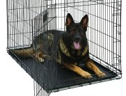 XXXL Dog Crate – Top 10 Best XXL Dog Crates and XXXL Dog Crates 2018 Reviews