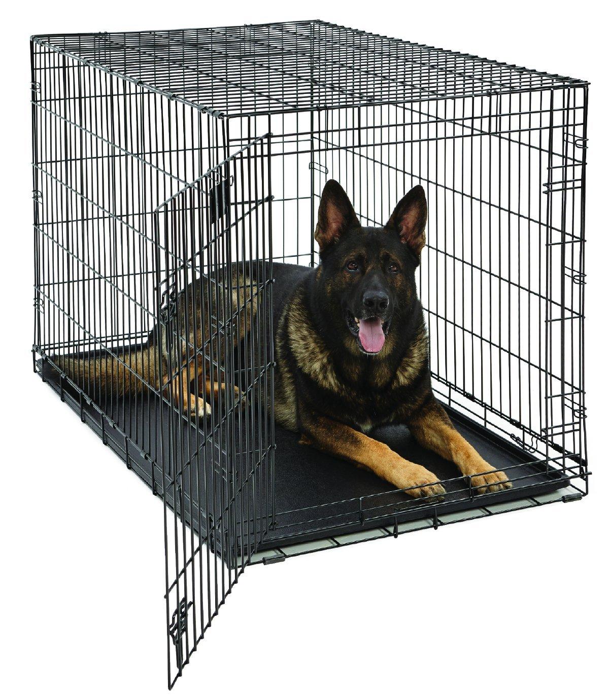 Best Dog Kennel Design