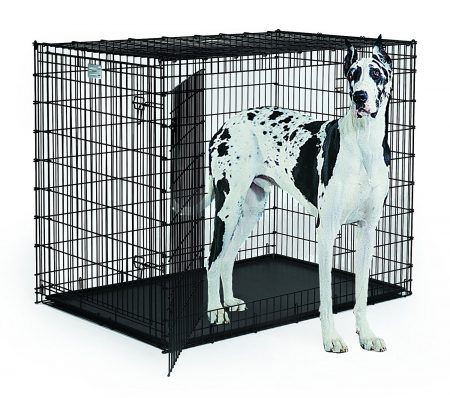 "Midwest Solution Series ""Ginormus"" Double Door Dog Crate"