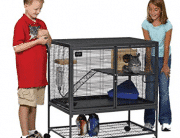 Top 10 Best Rabbit Cages in 2019 – Buyer's guide