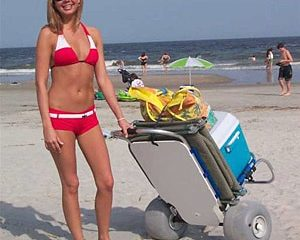Top 15 Best Beach Carts in 2018 – Buyer's Guide