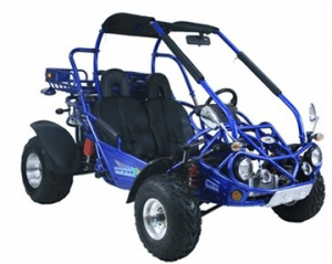 TRAILMASTER 300CC XRX GOKART - Off Road Go Karts