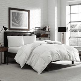 Luxury Eddie Bauer Hypoallergenic 650 Fill Power Lofty Down Comforter - Cotton Comforters