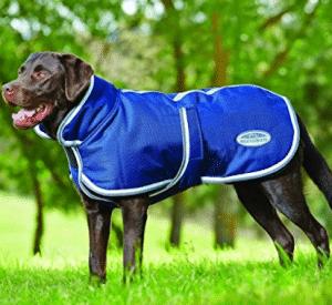 WeatherBeeta Parka 1200D Deluxe Dog Coat, Dog Sweaters