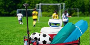 YSC Wagon Garden Folding Utility Shopping Cart