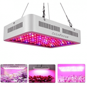 ColoFocus 600W LED Indoor Plants Grow Light Kit