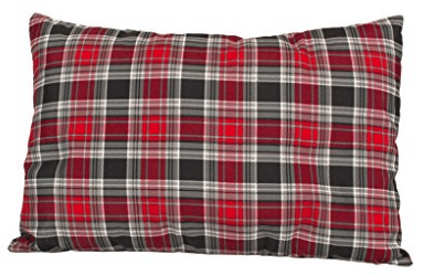TETON Sports Camp Pillow Perfect for Camping and Travel