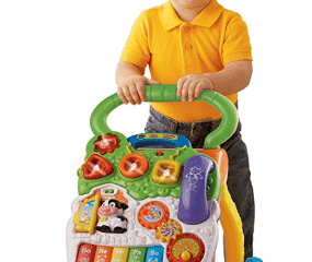Top 10 Best Baby Push Toy Walkers in 2019 Reviews – Buyer's Guide