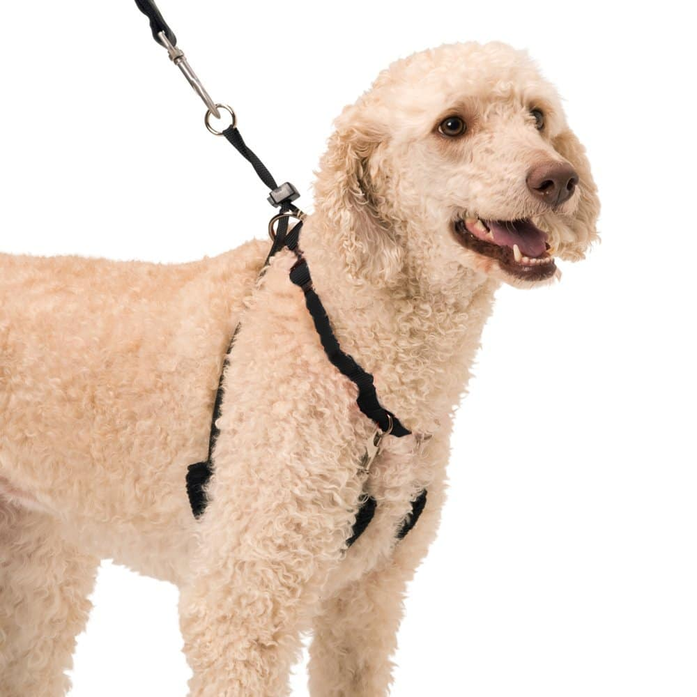 Dog Halter - Non-Pull No-Choke Humane Pet Training Halter Harness