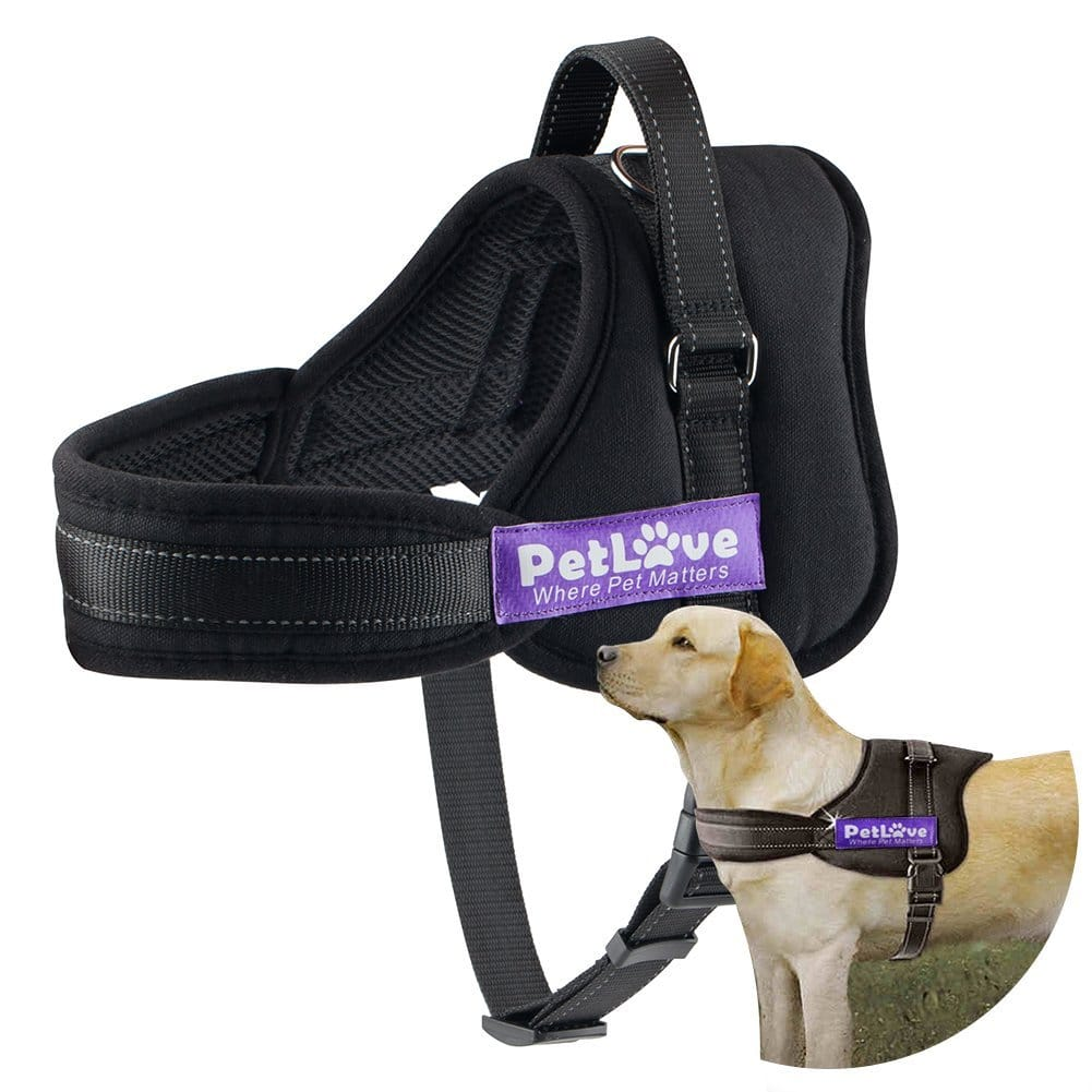 Dog Harness, PetLove Soft Leash Padded No Pull Dog