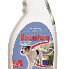 Top 15 Best Dog Repellent Spray in 2021 Reviews