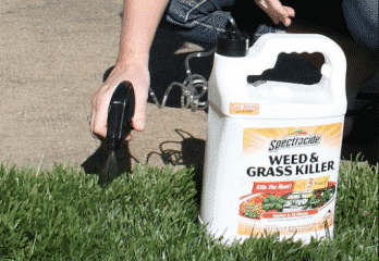 Top 10 Best Weed and Grass Killers in 2018 – Buyer's Guide