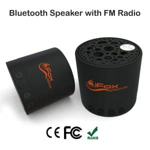 iFox iF010 Blue-tooth Speaker
