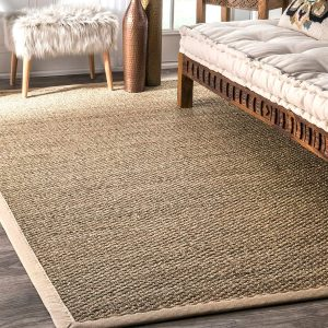 "nuLOOM 200BHSG01A Elijah Seagrass with Border Area Rug, 2' 6"" x 4'"