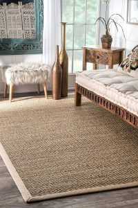 nuLOOM 200BHSG01A Elijah Seagrass with Border Area Rug, 2' x 3'