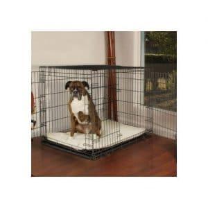 Petco Premium 2-Door Dog Crates