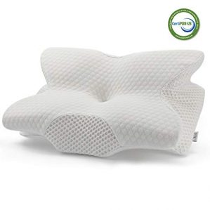 Best Neck Support Pillows