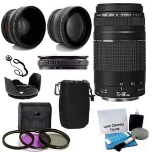 Canon Wide Angle Len EF 75-300mm f/4-5.6 Lens