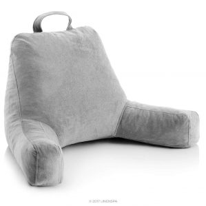 Linespa Back Support Pillows