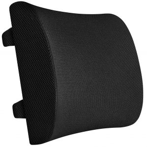Everlasting Comfort Lumbar Support Pillow