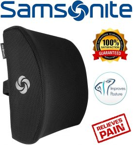 Samsonite Back Support Pillows