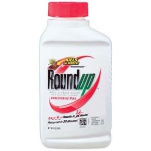 Roundup Weed and Grass Killer