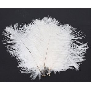 #10. 15-20 cm White Ostrich Feathers