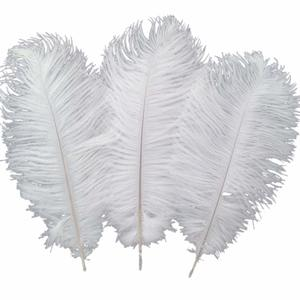 #4. Sowder 12-14inch 30-35cm Ostrich Feathers for Home Office Wedding Decoration
