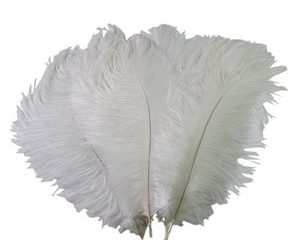 #5. Sealike 15-20cm Real Natural White Ostrich Feather For Home