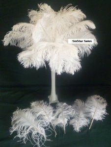 #6. 13-16 G��inch long Bleach White Ostrich Tail Feathers