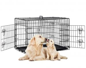 Best 48-inch Extra Large Dog Crates