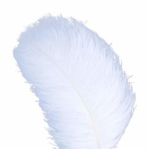 #9.AWAYTR Natural White Ostrich Feathers