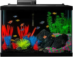 #1 GloFish Aquarium Kit Fish Tank