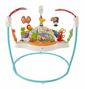 #10. Fisher-Price Animal Activity Jumperoo