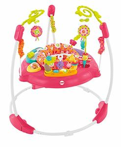 #5. Fisher-Price Jumperoo Pink Petals