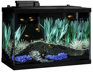 #6 Tetra 20 Gallon Complete Aquarium