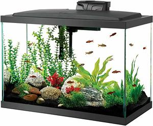 #7 Aqueon LED Aquarium 20H Black
