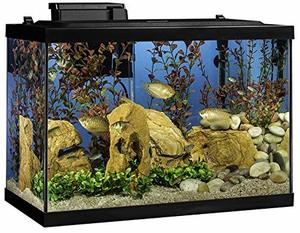 #8 Tetra 20 Gallon Aquarium Kit
