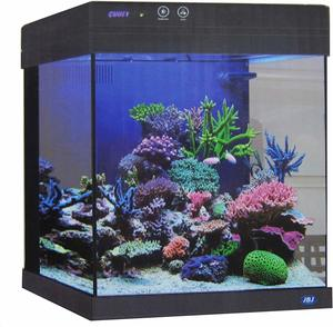 #9 Cubey JBJ 20 Gallon Durable Black Aquarium
