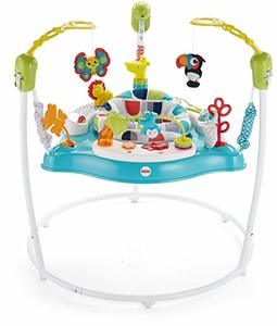 #9. Fisher-Price Color Climbers Jumperoo