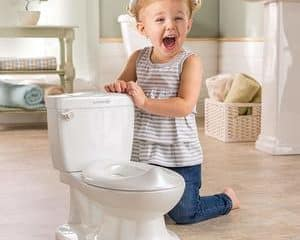 Top 10 Best Potty Seats in 2020 Reviews