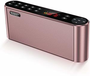 3. Antimi Bluetooth Speakers with FM Radio MP3 Player