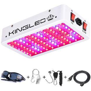 10. King Plus 1000w LED Grow Light