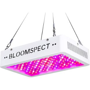 3. BLOOMSPECT Upgraded 1000W LED Grow Lights